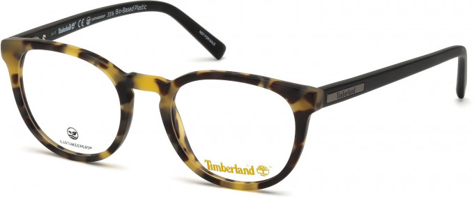 Timberland TB1579 glasses in Havana/Other