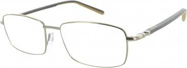 Ducati DA3002 Glasses in Gold