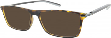 Ducati DA1001 Sunglasses in Tortoiseshell