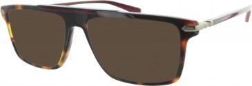 Ducati DA1009 Sunglasses in Tortoiseshell/Red