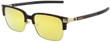Ducati DA5004 Sunglasses in Tortoiseshell/Gold