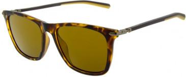 Ducati DA5001 Sunglasses in Tortoiseshell