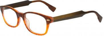 Ted Baker TSS009 Glasses in Honey