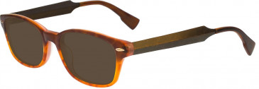 Ted Baker TSS009 Sunglasses in Honey