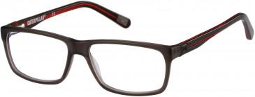 CAT CTO-TITEN glasses in Gloss Brown