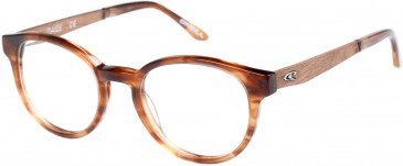 O'Neill ONO-DAIZE glasses in Gloss Marmalade Horn