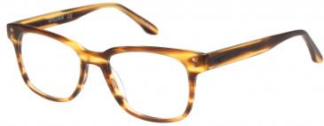 O'Neill ONO-DILLAN glasses in Matt Blonde Horn