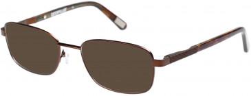 CAT CTO-CALCITE Sunglasses in Matt Brown