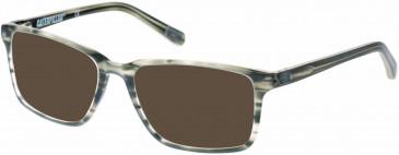 CAT CTO-CHUCK Sunglasses in Gloss Khaki Horn