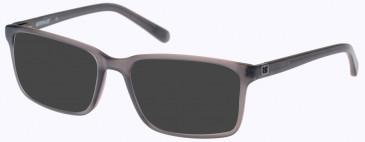 CAT CTO-GRANITE Sunglasses in Gloss Brown/Brown Horn