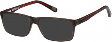 CAT CTO-TITEN Sunglasses in Gloss Brown