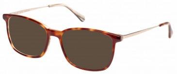 Radley RDO-KIRSTIE Sunglasses in Gloss Tortoiseshell