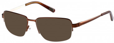 CAT CTO-TAPPER Sunglasses in Matt Brown