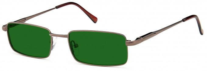 SFE Collection Prescription Sunglasses SFES-0120