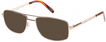 CAT CTO-SLATE Sunglasses in Matt Gold