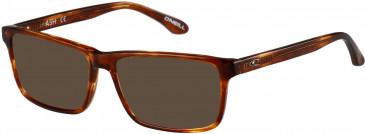 O'Neill ONO-ASH Sunglasses in Matt Marmalade Horn