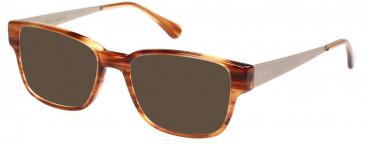 Radley RDO-FAE Sunglasses in Gloss Horn
