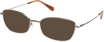 Radley RDO-HATTIE Sunglasses in Shiny Gold