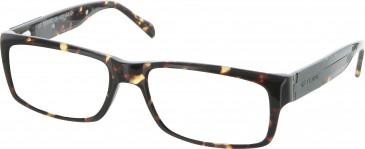 GF Ferre FF220 Glasses in Tortoise