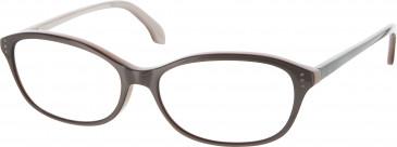Calvin Klein Glasses in Brown