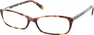 Calvin Klein Glasses in Tortoise
