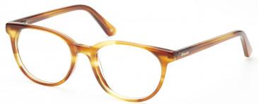 Dune DUN005 glasses in Brown