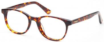 Dune DUN014 glasses in Demi Brown