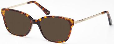 Dune DUN009 Sunglasses in Demi Brown