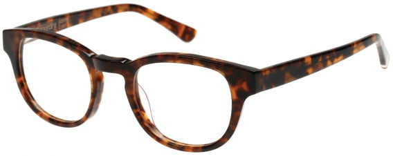 Superdry SDO-JONNY Glasses in Gloss Tortoise