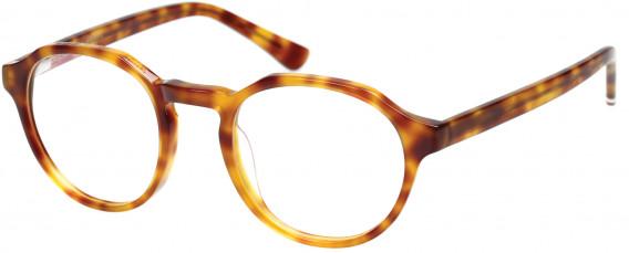 Superdry SDO-JADEN Glasses in Gloss Blonde Tortoise