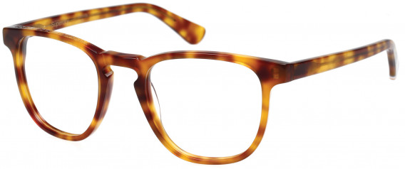 Superdry SDO-CASSIDY Glasses in Gloss Blonde Tortoise