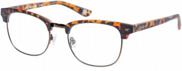 Superdry SDO-SACRAMENTO Glasses in Matte Tortoise
