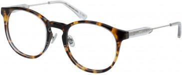 Superdry SDO-FREEWAY Glasses in Gloss Tortoise