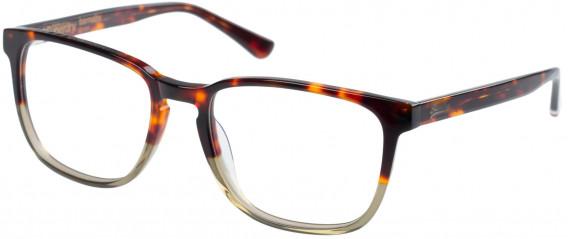 Superdry SDO-BARNABY Glasses in Gloss Tortoise