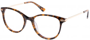 Superdry SDO-SHIKA Glasses in Gloss Tortoise