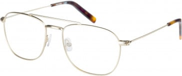 Farah FHO-1016 Glasses in Gold