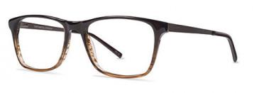 ZENITH 87-50 Glasses in Brown