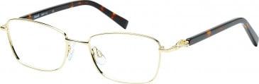 Rafaelle RAF113 Glasses in Gold