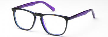 Crosshatch CRF530 Glasses in Purple