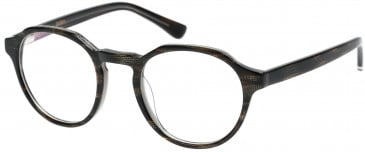 Superdry SDO-JADEN Glasses in Gloss Tortoise