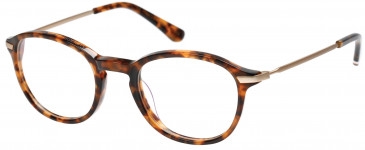 Superdry SDO-FRANKIE Glasses in Gloss Tortoise/Gold