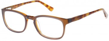 Superdry SDO-JUDSON Glasses in Gloss Purple