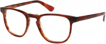 Superdry SDO-CASSIDY Glasses in Gloss Rootbeer