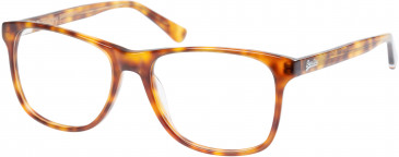 Superdry SDO-PATERSON Glasses in Gloss Tortoise