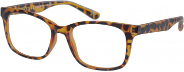 Superdry SDO-MAIKA Glasses in Matte Tortoise