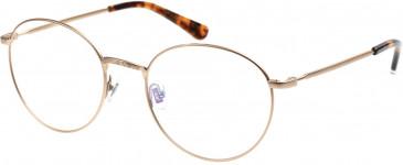 Superdry SDO-TEGAN Glasses in Matte Gold/Tortoise