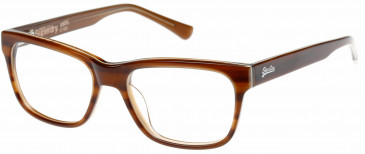Superdry SDO-USHI Glasses in Horn