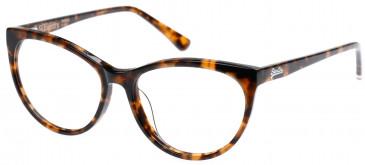 Superdry SDO-NEKO Glasses in Gloss Tortoise