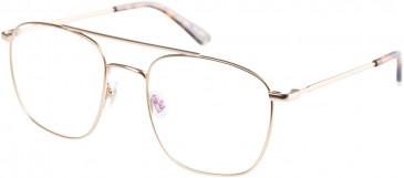 Superdry SDO-KARE Glasses in Matte Gold/Tortoise