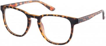 Superdry SDO-UNI Glasses in Matte Tortoise